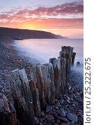 Купить «Sunset over Bossington Beach, Exmoor National Park, Somerset, England. Spring (March) 2012.», фото № 25222675, снято 16 июля 2018 г. (c) Nature Picture Library / Фотобанк Лори