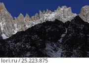 Купить «Yapaya Pass, Baima Snow mountain, Yunnan province, China, April 2011», фото № 25223875, снято 27 мая 2020 г. (c) Nature Picture Library / Фотобанк Лори