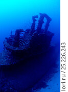 Купить «British S Class submarine 'HMS Stubborn' conning tower, Buggiba, Qawara Point. Malta.», фото № 25226243, снято 17 августа 2018 г. (c) Nature Picture Library / Фотобанк Лори
