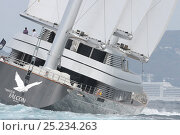 Купить «88-Metre 'Maltese Falcon' during the St Barths Bucket superyacht regatta, St Barthelemy, Caribbean, March 2013. All non-editorial uses must be cleared individually.», фото № 25234263, снято 16 июля 2018 г. (c) Nature Picture Library / Фотобанк Лори