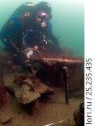 Купить «Maritime archaeologist on the wreck of HMS Pomone, a 38 gun Leda class frigate. Sank in 1805 on the Needles. Isle of Wight, August 2011.», фото № 25235435, снято 24 апреля 2018 г. (c) Nature Picture Library / Фотобанк Лори