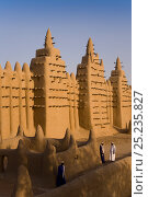 Djenne Mosque, the largest mud structure in the world, Djenne is a UNESCO World Heritage Site, Niger Inland Delta, Mopti Region, Mali 2006. No release available. Стоковое фото, фотограф Gavin Hellier / Nature Picture Library / Фотобанк Лори
