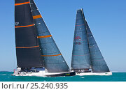 Купить «'Bella Mente' and 'Shockwave' racing on day one of Key West Race Week, Florida, USA, January 2013. All non-editorial uses must be cleared individually.», фото № 25240935, снято 28 мая 2018 г. (c) Nature Picture Library / Фотобанк Лори