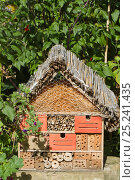 Купить «Artificial nesting place for insects 'bug hotel'. Lower Saxony, Germany, September.», фото № 25241435, снято 19 октября 2019 г. (c) Nature Picture Library / Фотобанк Лори