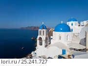 Купить «Blue domed churches in the village of Oia (La), Santorini (Thira), Cyclades Islands, Aegean Sea, Greece, 2010», фото № 25241727, снято 28 мая 2018 г. (c) Nature Picture Library / Фотобанк Лори