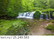 Купить «The River Lathkill, Lathkill Dale National Nature Reserve, Peak District National Park, UK. June.», фото № 25249583, снято 27 мая 2018 г. (c) Nature Picture Library / Фотобанк Лори
