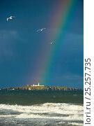 Купить «RAinbos over Inner Farne Island seen from mainland, Farne Islands, Northumberland, June 2010.», фото № 25257735, снято 14 августа 2018 г. (c) Nature Picture Library / Фотобанк Лори