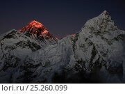 The last light of day illuminating the summit of Mount Everest, Sagarmatha National Park, Khumbu, Himalayas, Nepal, October 2011. Стоковое фото, фотограф Enrique Lopez-Tapia / Nature Picture Library / Фотобанк Лори
