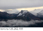 Купить «Scenic view from Mt. Rainier Sunrise point to the eastern ridges, Governors ridge, Crystal Mountain, Norse Peak of Cascade Range at sunrise, Mt. Rainier...», фото № 25262191, снято 19 августа 2018 г. (c) Nature Picture Library / Фотобанк Лори