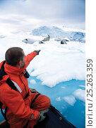 Купить «Man in zodiac boat watching Crabeater Seals (Lobodon carcinophagus) resting on sea ice. Antarctic Peninsula, January. Book plate from Mark Carwardine's Ultimate Wildlife Experiences.», фото № 25263359, снято 25 мая 2018 г. (c) Nature Picture Library / Фотобанк Лори