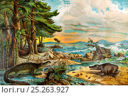 Landscape of the Triassic coastal environment with reconstructions of dinosaurs and marine reptiles, 'Dr. Schubert's Naturgeschichte - Geologie, Mineralreich... Стоковое фото, фотограф Paul D Stewart / Nature Picture Library / Фотобанк Лори