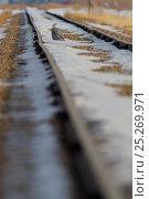 Купить «Snowy owl (Bubo scandiaca) sitting in the distance on snow covered railway tracks, Saskatchewan, Canada.», фото № 25269971, снято 26 марта 2019 г. (c) Nature Picture Library / Фотобанк Лори