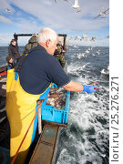 Купить «Fisherman throwing out fish scraps to attract seabirds for tourists and photographers on boat trip to Bass Rock, North Berwick, Scotland, UK, July 2010», фото № 25276271, снято 22 июля 2018 г. (c) Nature Picture Library / Фотобанк Лори