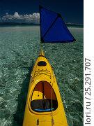 Купить «Kayak with small sail, Solomon Islands, Melanesia, August 2008.», фото № 25291707, снято 19 июля 2018 г. (c) Nature Picture Library / Фотобанк Лори