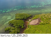 Купить «Aerial view of slash and burn areas on island causing run-off of soil into the coastal reefs, Palawan, Philippines, May 2009.», фото № 25299263, снято 4 июня 2020 г. (c) Nature Picture Library / Фотобанк Лори
