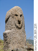 Купить «Close up of Bronze age (c 3,500 year old) granite statue menhir standing stone at Filitosa with carved face. Corsica, France, June 2010.», фото № 25301231, снято 19 декабря 2018 г. (c) Nature Picture Library / Фотобанк Лори