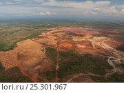Купить «Aerial view of Rio Tuba nickel mine, Palawan, Philippines, April 2010.», фото № 25301967, снято 26 мая 2018 г. (c) Nature Picture Library / Фотобанк Лори