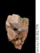 Купить «Feldspar puesdomorph Scapolite. Sample from Ontario, Canada.», фото № 25302779, снято 15 апреля 2018 г. (c) Nature Picture Library / Фотобанк Лори