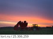 Купить «Sugar beet (Beta vulagaris) crop being harvested, Norfolk, UK, January 2009», фото № 25306259, снято 23 февраля 2018 г. (c) Nature Picture Library / Фотобанк Лори