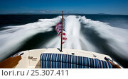 Купить «Hinckley T38 speedboat cruising off Rhode Island, USA, August 2008. All non-editorial uses must be cleared individually.», фото № 25307411, снято 15 августа 2018 г. (c) Nature Picture Library / Фотобанк Лори