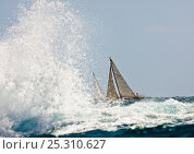 Купить «Waves crashing against the rocks as yachts pass behind. Grenada Sailing Festival, Caribbean, January 2010.», фото № 25310627, снято 14 декабря 2017 г. (c) Nature Picture Library / Фотобанк Лори