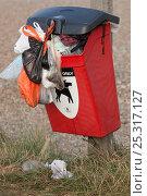 Купить «Dog mess bin overflowing, Cley Beach, Norfolk, UK, September 2009», фото № 25317127, снято 22 марта 2018 г. (c) Nature Picture Library / Фотобанк Лори