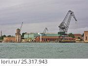 Купить «Docks in Venice, Italy, May 2005.», фото № 25317943, снято 17 августа 2018 г. (c) Nature Picture Library / Фотобанк Лори