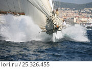 """Купить «J-class K4 """"Cambria"""" during Cannes Royal Regatta, France, 2008. All non-editorial uses must be cleared individually.», фото № 25326455, снято 21 августа 2018 г. (c) Nature Picture Library / Фотобанк Лори"""