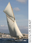 """Купить «""""Moonbeam IV"""" during race in Cannes Royal Regatta, France 2008. All non-editorial uses must be cleared individually.», фото № 25328427, снято 16 июля 2018 г. (c) Nature Picture Library / Фотобанк Лори"""