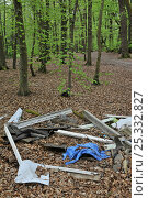 Купить «Illegal fly-tipping in Beech (Fagus) woodland in spring. Surrey, England, UK», фото № 25332827, снято 23 апреля 2018 г. (c) Nature Picture Library / Фотобанк Лори
