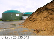 Купить «Biogas plant with fermenting chambers for methane production from maize silage and silage heap in foreground. Cornau, near Vechta, Lower Saxony, Germany.», фото № 25335343, снято 28 мая 2018 г. (c) Nature Picture Library / Фотобанк Лори