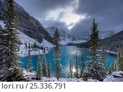 Купить «Morraine Lake, in the Valley of the Ten Peaks, after recent snowfall, Banff National Park, Alberta, Canada. October 2009», фото № 25336791, снято 31 мая 2020 г. (c) Nature Picture Library / Фотобанк Лори