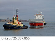 "Купить «Liverpool Tug ""Svitzer Bidstonug"" towing tanker, manoeuvring around midriver to enter Alfred Dock. Birkenhead, England, June 2010.», фото № 25337855, снято 17 июля 2018 г. (c) Nature Picture Library / Фотобанк Лори"