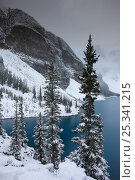 Купить «Morraine Lake, in the Valley of the Ten Peaks, after recent snowfall, Banff National Park, Alberta, Canada. October 2009», фото № 25341215, снято 31 мая 2020 г. (c) Nature Picture Library / Фотобанк Лори