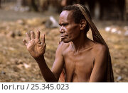 Купить «Portrait of Dani woman holding up her hand to show cut fingers, which signify mourning. Baliem valley, West Papua, former Irian-Jaya, Indonesia, August 2002 (West Papua).», фото № 25345023, снято 20 июня 2019 г. (c) Nature Picture Library / Фотобанк Лори