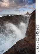 Купить «Waves crashing on rocks, north coast of Tenerife», фото № 25345955, снято 14 декабря 2017 г. (c) Nature Picture Library / Фотобанк Лори