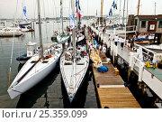 Купить «Yachts moored in marina, 12 Metre World Championships, Newport, Rhode Island, USA. September 2009.», фото № 25359099, снято 16 июля 2018 г. (c) Nature Picture Library / Фотобанк Лори
