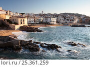 Купить «Calella de Palafrugell, Costa Brava, Gerona, Catalonia, Spain. March 2009.», фото № 25361259, снято 24 июня 2018 г. (c) Nature Picture Library / Фотобанк Лори