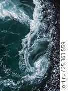 Купить «Whirlpool in the sea, Saltstraumen, Bodö, Norway, October 2008», фото № 25363559, снято 21 июля 2018 г. (c) Nature Picture Library / Фотобанк Лори