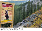 Купить «Bear sign stating official park safety information and regulations regarding bear encounters, Banff National Park, Rocky Mountain, Alberta, Canada, September 2009», фото № 25365283, снято 31 мая 2020 г. (c) Nature Picture Library / Фотобанк Лори