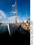 Купить «Wide angle view of yacht moored in marina. 12 Metre World Championships, Newport, Rhode Island, USA. September 2009.», фото № 25371307, снято 16 июля 2018 г. (c) Nature Picture Library / Фотобанк Лори