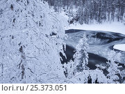 Купить «Ice being drawn into whirlpool, Kitkajoki River, Kuusamo, Oulanka National Park, Finland, February 2009», фото № 25373051, снято 21 июля 2018 г. (c) Nature Picture Library / Фотобанк Лори