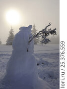 Купить «Snowman on Hauts Fourneaux, Ballon des Vosges Nature Park, Vosges, Lorraine, France, January 2009», фото № 25376559, снято 19 июля 2018 г. (c) Nature Picture Library / Фотобанк Лори