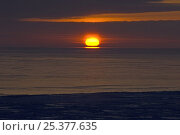 Купить «Sunset over pack ice, Chukchi Sea, off the Arctic coast of Point Hope, Alaska, March 2008», фото № 25377635, снято 16 июля 2018 г. (c) Nature Picture Library / Фотобанк Лори