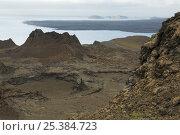 Купить «Lava cone on Bartolome Island, Galapagos Islands, Nov 2007.», фото № 25384723, снято 5 апреля 2020 г. (c) Nature Picture Library / Фотобанк Лори