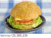 Купить «Гамбургер с котлетой, сыром и овощами», фото № 25385235, снято 11 февраля 2017 г. (c) Елена Коромыслова / Фотобанк Лори