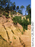 Купить «Tourists visiting the old ochre mines at Roussillon, Provence, France. June 2008.», фото № 25392047, снято 17 октября 2018 г. (c) Nature Picture Library / Фотобанк Лори