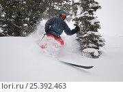 Купить «Skier Phil Atkinson skiing through deep powder snow above Denny Lake, Beartooth Mountains, Montana, USA May 2008», фото № 25392463, снято 6 июля 2020 г. (c) Nature Picture Library / Фотобанк Лори