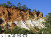 Купить «Different coloured layers of rock and erosion in the old ochre quarry, known as the Colorado Provençal at Rustrel, Provence, France. June 2008.», фото № 25403679, снято 17 августа 2018 г. (c) Nature Picture Library / Фотобанк Лори