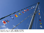 Купить «Nautical signal flags flying on sailing boat on Bristol Floating Harbour at the 2008 Harbour Festival, August», фото № 25408575, снято 19 декабря 2018 г. (c) Nature Picture Library / Фотобанк Лори